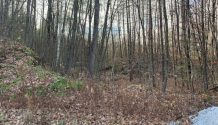 LOT 8 NORTH CLARENDON, VT 05759